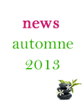 Miniature_News_Automne13.fw