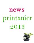 Miniature_News_Printanier13.fw