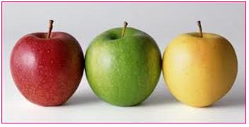 Pommes2.fw